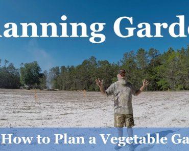 Planning Garden : How to Plan a Vegetable Garden