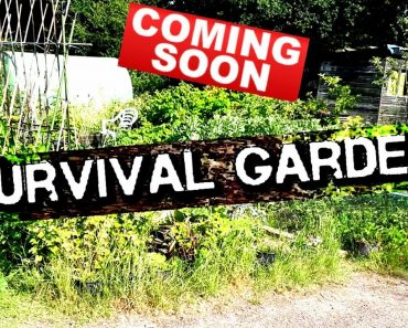 THE SURVIVAL GARDEN – COMMING SOON