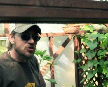 Survival Garden & Greenhouse – Forge Survival Supply