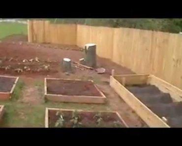 Planting The Prepper Garden