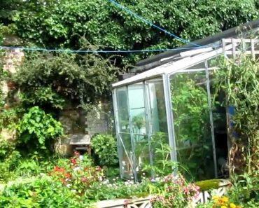 Prepper Vegetable Garden