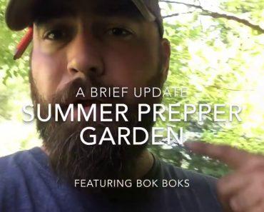 Summer Prepper Garden- Update!