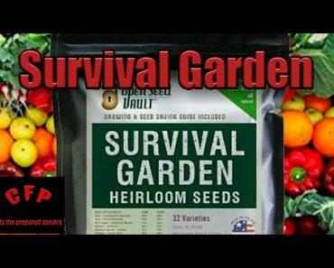 Open Seed Vault Survival Garden Review