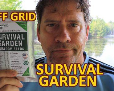 Off Grid Cabin Survival Garden