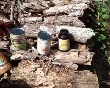 Newbie Prepper Food Storage Solutions How to Store Calories Part 1 Short Term – The Art of Prepping