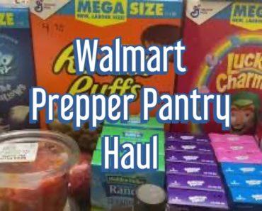 $170 Walmart Prepper Pantry Haul