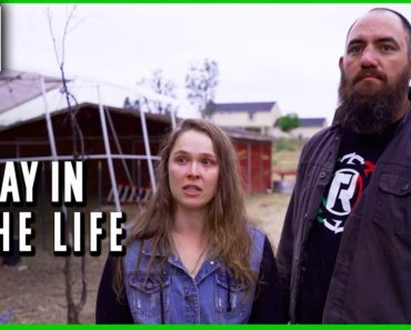 A Day in the Life of Ronda Rousey and Travis Browne
