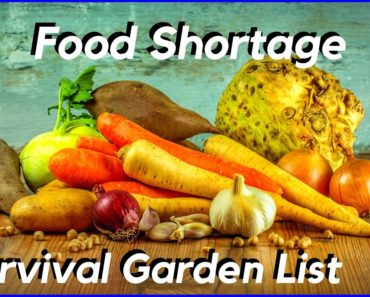 Food Shortage – Survival Garden Crops You Should be Growing (NOW)