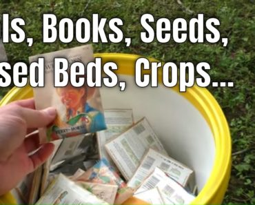 Survival Gardening Tips // Tools, Books, Raised Beds, Seeds, Crops…