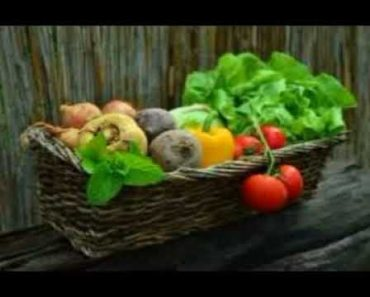 [PREPPER-SERIES]: Growing your own food, gardening