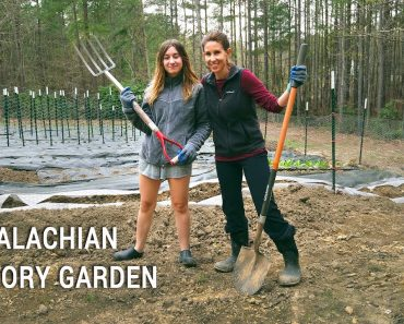 Appalachian Victory Garden: Getting Started