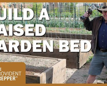 How to a Build Raised Garden Beds with Stunning Results