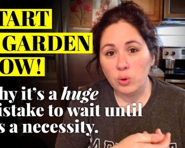 START A GARDEN NOW! 👀 It could be a matter of survival!