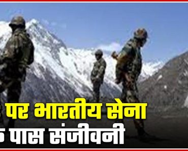 Plants From Survival Garden Act As 'Sanjeevani' For Indian Army   ABP News