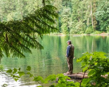 7 ideas to celebrate the Go Fishing Day