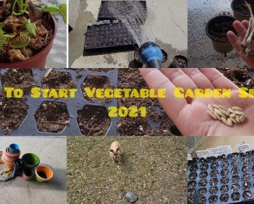 Prepper Gardening | How To Start  Vegetable Seeds | Seed Starter Trays | Planting Seeds 2021