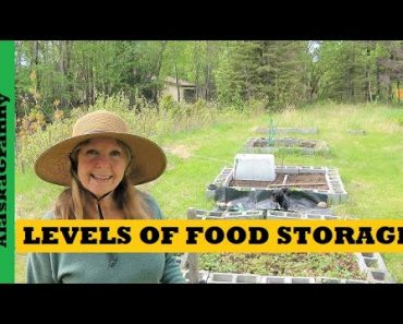 Prepper Levels Of Food Storage – Creative Solutions For Sustainable Food – Garden
