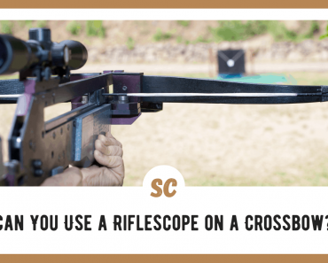 Can You Use a Riflescope on a Crossbow?