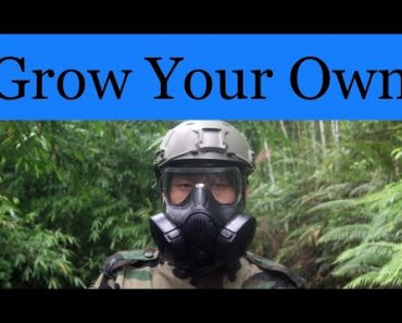 SHTF Garden – Easy to Grow Survival Food for the Food Shortages and Beyond 2021 {How YOU Can Too}