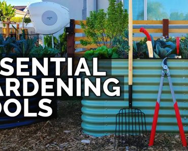 12 Essential Gardening Tools for Beginner and Advanced Gardeners