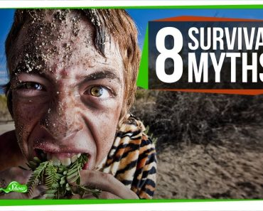 8 Survival Myths That Will Definitely Make Things Worse