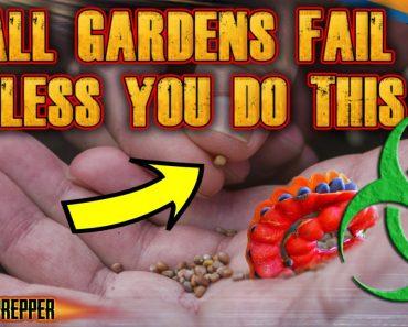 Why Survival Gardens Fail