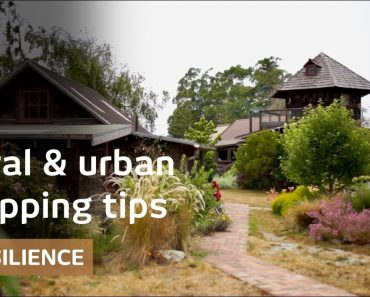 How will we live? urban prepping & rural resilience's momentum